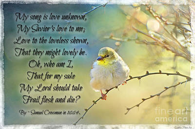 Morning Goldfinch With Verse II Poster by Debbie Portwood