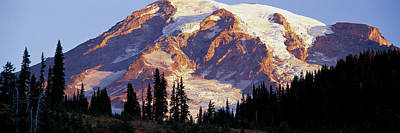 Morning Light On Mt. Rainier Poster by Panoramic Images