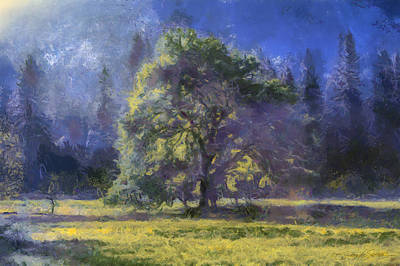 morning light Yosemite Valley Poster