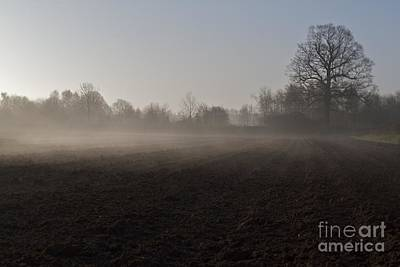 Poster featuring the photograph Morning Mist  by Gary Bridger