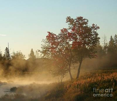 Morning On Middle River Poster