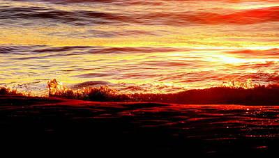 Morning Splash Poster by Karen Wiles