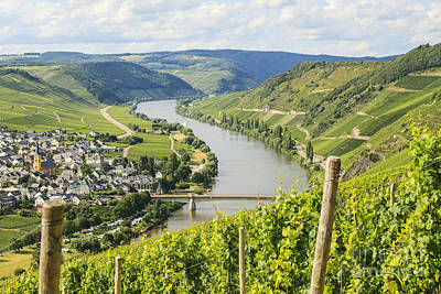 Mosel Area Poster by Patricia Hofmeester