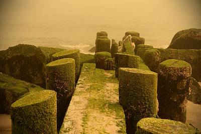 Mossy Jetty - Jersey Shore Poster