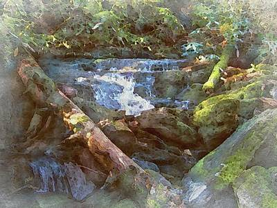 Mossy Smoky Mountain Stream Poster by Philip White