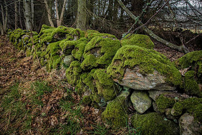 Mossy Stone Fence Poster