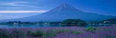 Mount Fuji Japan Poster