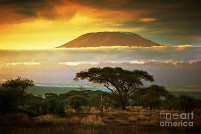 Mount Kilimanjaro Savanna In Amboseli Kenya Poster by Michal Bednarek