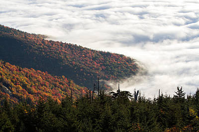 Mount Mitchell Morning Poster