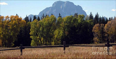 Poster featuring the photograph Mount Moran by Janice Westerberg