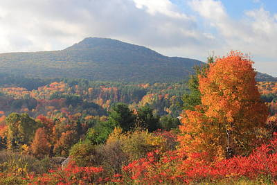Mount Norwatuck From Mount Pollux In Autumn Poster
