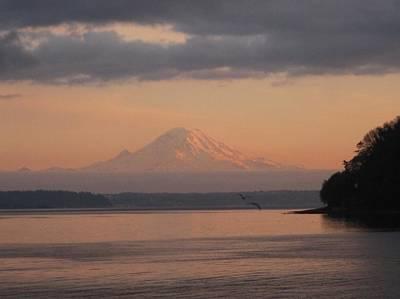 Poster featuring the photograph Mount Rainier Sunset by Karen Molenaar Terrell