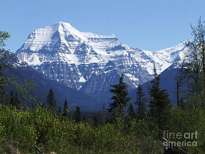 Mount Robson - Canada Poster by Phil Banks