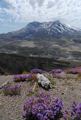 Mount Saint Helen's In Summer Poster