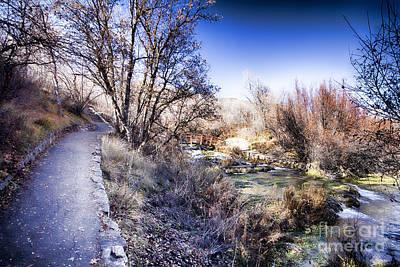 Mountain Creek Path-sundance Utah Poster by Douglas Barnard