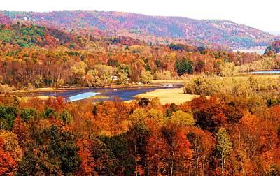 Mountain Foliage Series 022 Poster