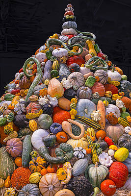 Mountain Of Gourds And Pumpkins Poster by Garry Gay
