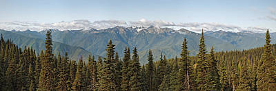 Mountain Range, Olympic Mountains Poster by Panoramic Images