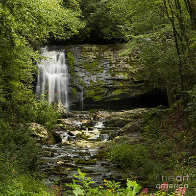 Mountain Stream Falls Poster