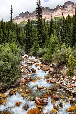 Mountain Stream Poster by Kathleen Bishop