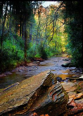 Mountain Stream N.c. Poster