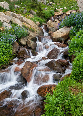 Poster featuring the photograph Mountain Stream by Ronda Kimbrow