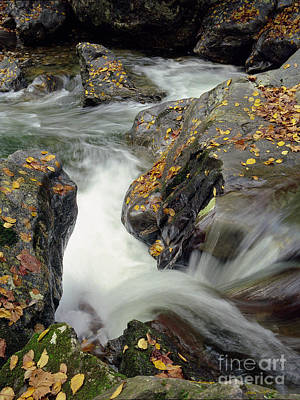 Mountains Stream 2004 Poster