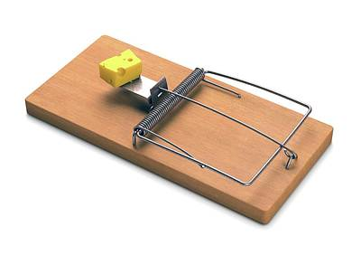 Mousetrap With Cheese Poster by Ktsdesign