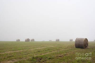 Mowed Meadow In The Mist Poster by Michal Boubin