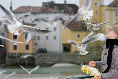 Mr A Woman Feed The Gull Poster