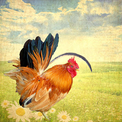 Mr. Rooster Greets The Day Poster by Lisa Knechtel