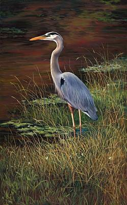 Mrs Blue Heron Poster by Laurie Hein