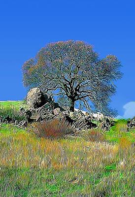 Mt. Diablo Oak Tree Poster by Wernher Krutein