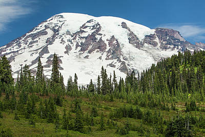 Mt Rainer And Forested Moraines As Seen Poster