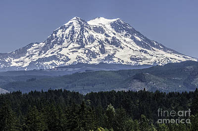 Mt Rainer In July Poster