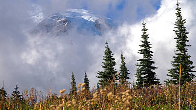 Mt Rainier Cloud Meadow Poster