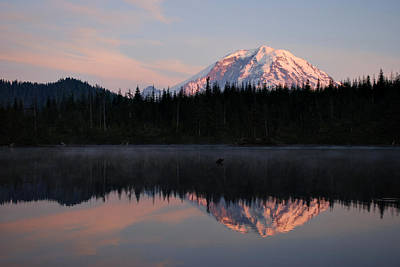 Mt. Rainier From Surprise Lake Poster