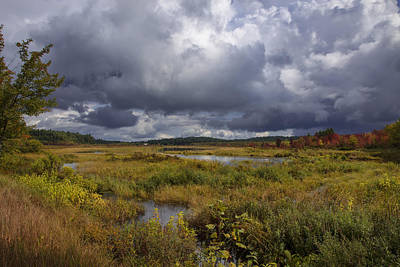 Mud Pond Clouds Poster