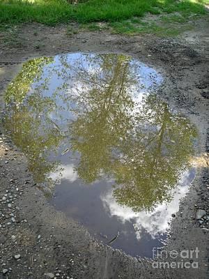 Mudpuddle Reflection Poster