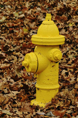 Mueller Fire Hydrant Poster