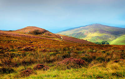 Multicolored Hills Of Wicklow I. Ireland Poster by Jenny Rainbow