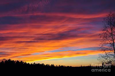 Multicolored Sunset Poster by Stuart Mcdaniel