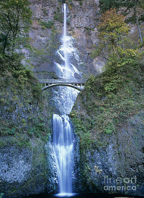 Poster featuring the photograph Multnomah Falls Columbia River Gorge by Dave Welling