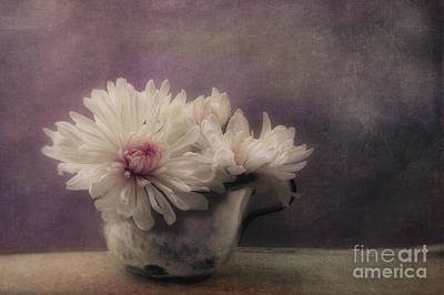 Mums In A Cup Poster by Priska Wettstein