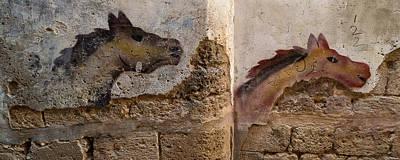 Mural Of Animal On Wall, Acre Akko Poster