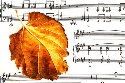 Music In Autumn Poster
