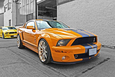Mustang Alley Poster