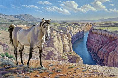Mustang At Bighorn Canyon Poster