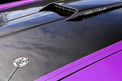 Mustang Mach1 428 Cobra Jet Hood 1969 In Purple Poster by Gill Billington