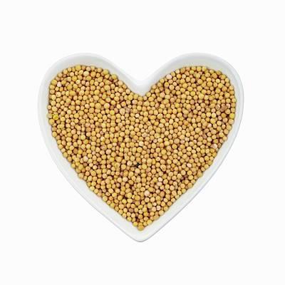 Mustard Seeds Poster by Geoff Kidd